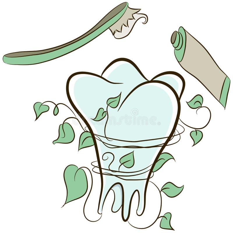 Dent naturelle illustration libre de droits