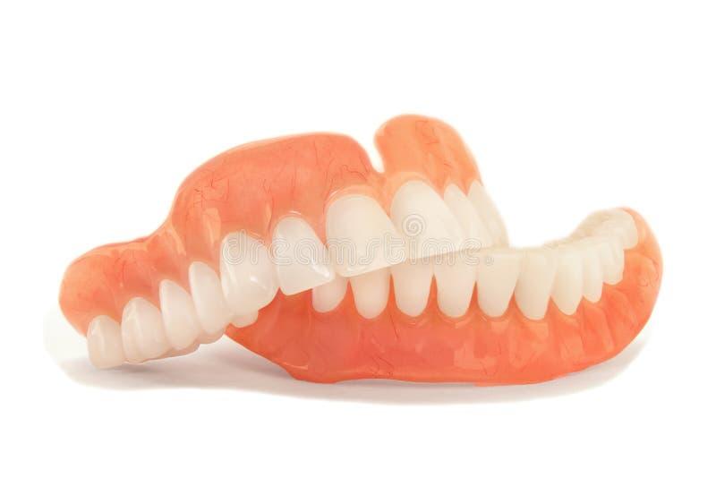 dentaduras Aislante en la prótesis de acrílico del fondo blanco del huma foto de archivo libre de regalías