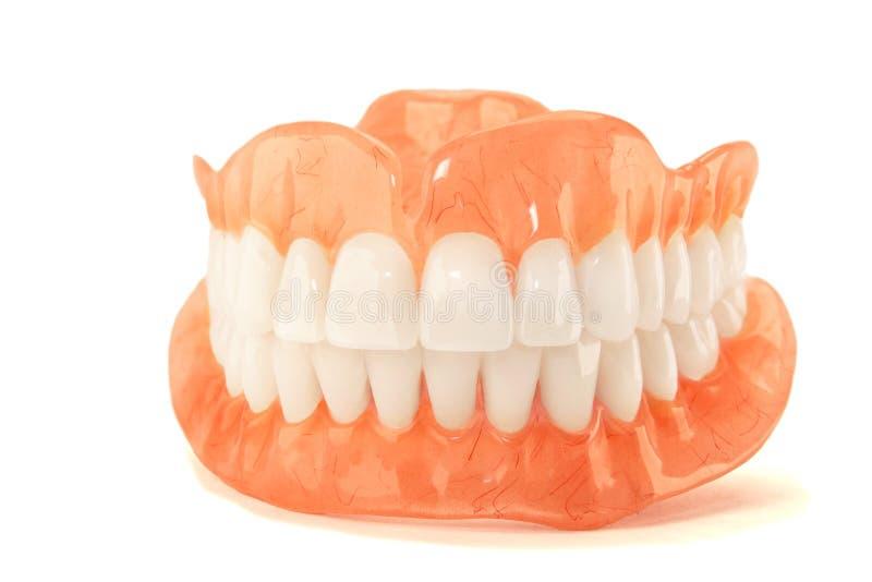 dentaduras Isolado na prótese acrílica do fundo branco do huma fotos de stock