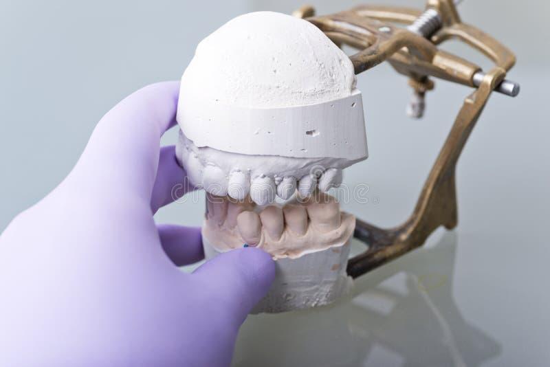 dentaire photographie stock libre de droits