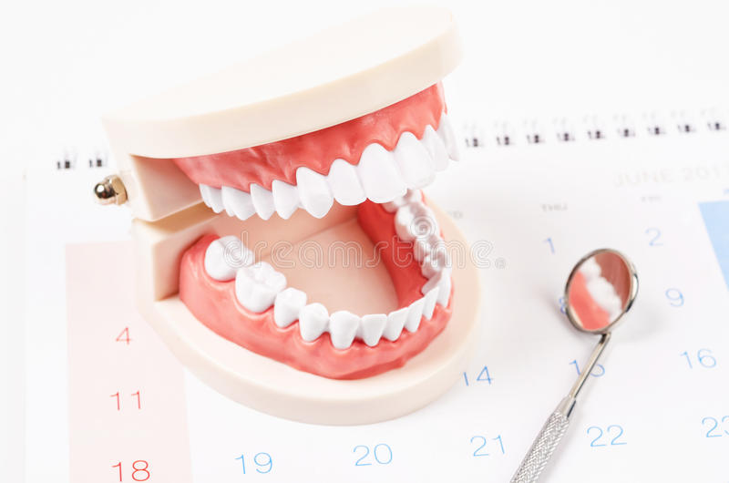 Dental appointment concept. White teeth model and dental instruments on calendar page background. Dental appointment concept stock photos