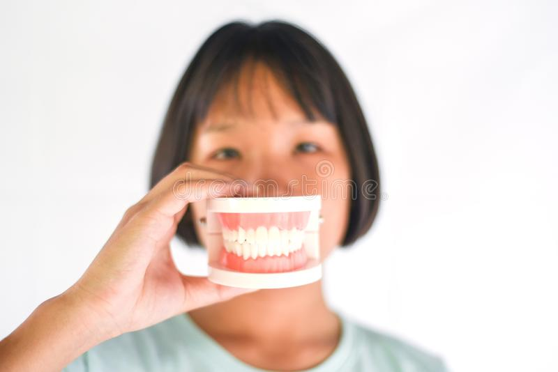 Dental health and child brush teeth concept / Asian child girl holding dental prosthesis , dentures for study. Dental health and child brush teeth concept Asian royalty free stock photos