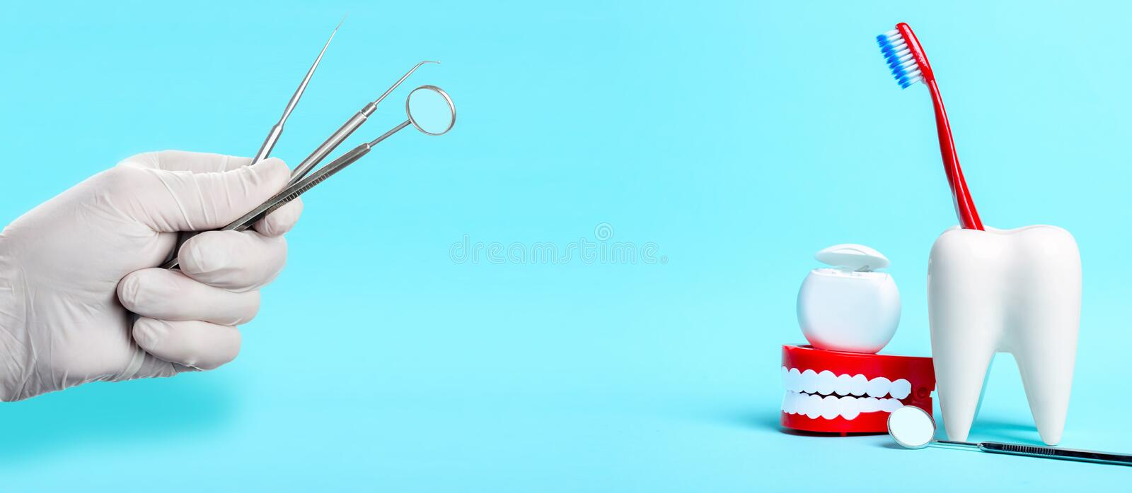 Dental health and teethcare concept. Dental mirror, human jaw model and dental floss near white tooth model with toothbrush. Instruments in doctors hand with stock photos