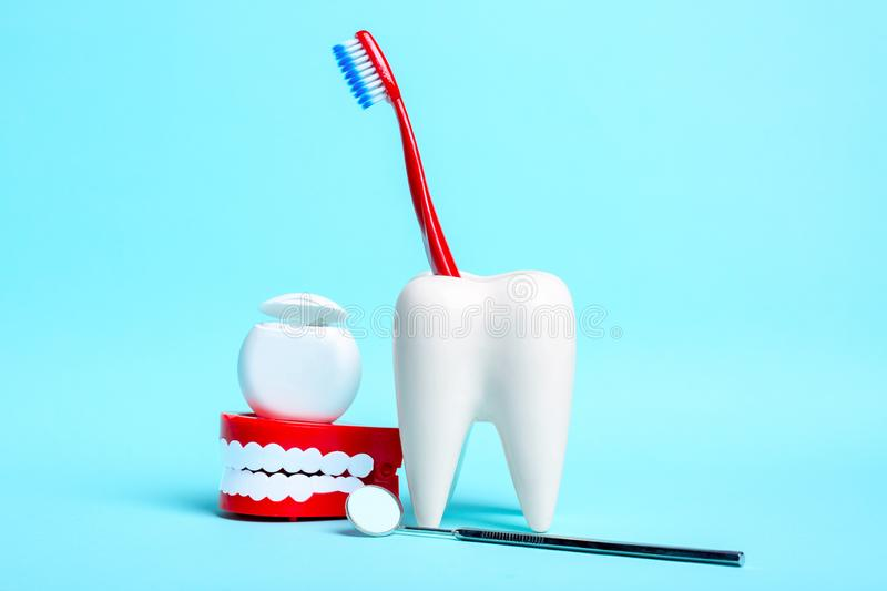 Dental health and teethcare concept. Dental mirror, human jaw model and dental floss near white tooth model with toothbrush on. Light blue background royalty free stock photo