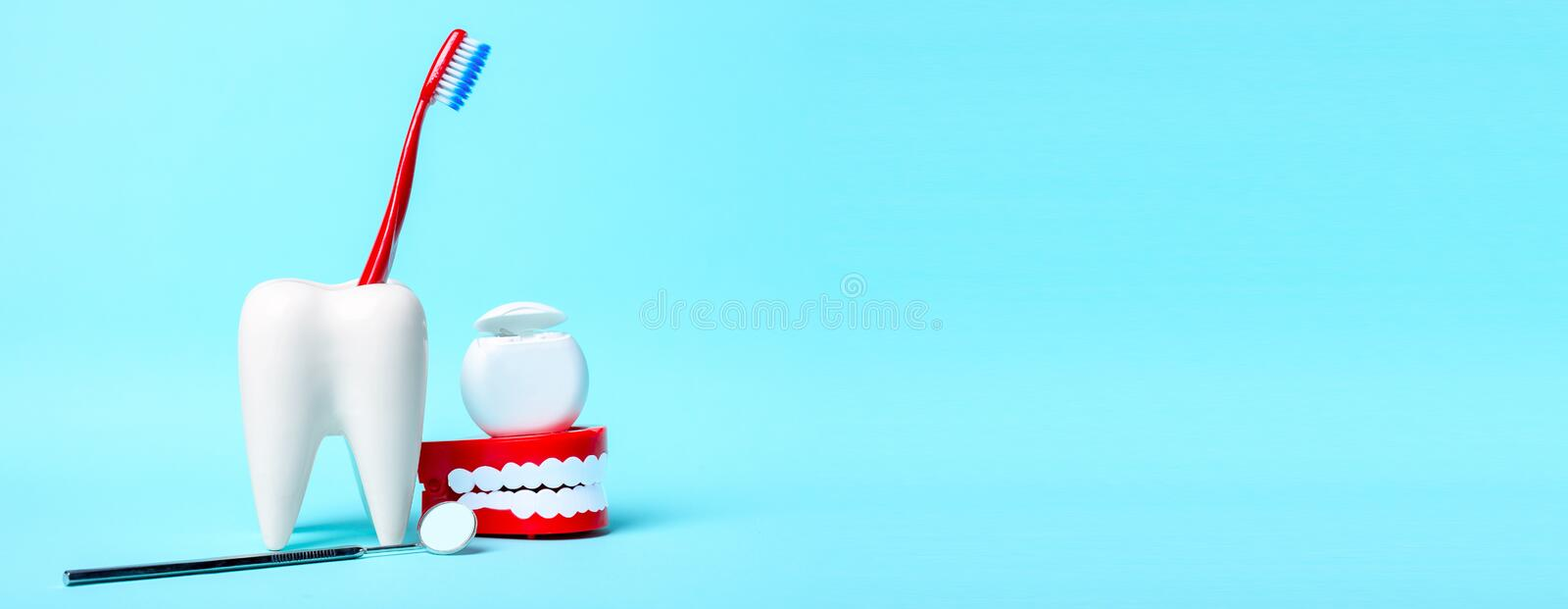 Dental health and teethcare concept. Dental mirror, human jaw model and dental floss near white tooth model with toothbrush on. Light blue background. Free royalty free stock images