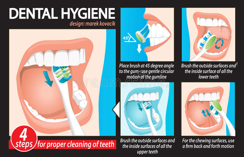 Dental_Hygiene illustrazione vettoriale