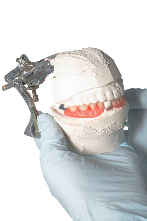 Download Dental Lab Articulator With Dental Prosthesis Stock Photo - Image: 13963690