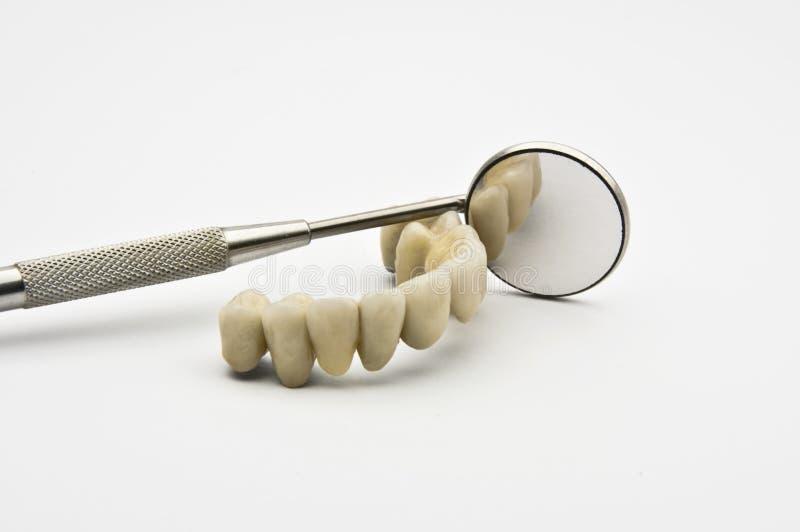 Dental prosthesis. With Dental Mirror on white background stock image