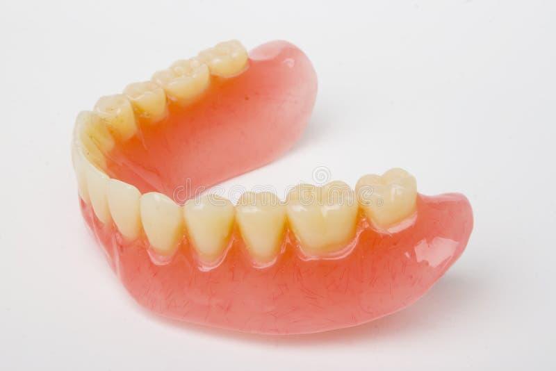 Dental prosthesis. On white background royalty free stock photography