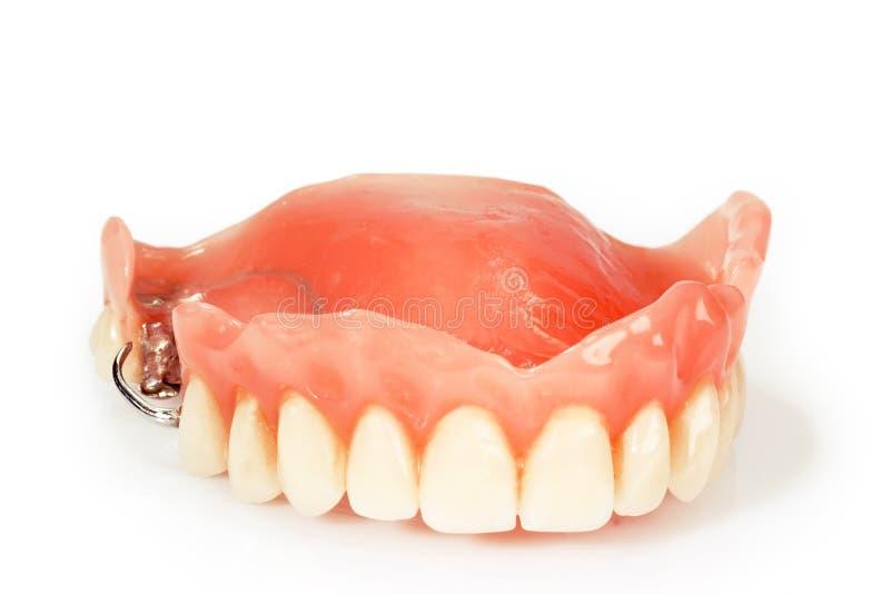 Dental prosthesis. On bright background stock photo
