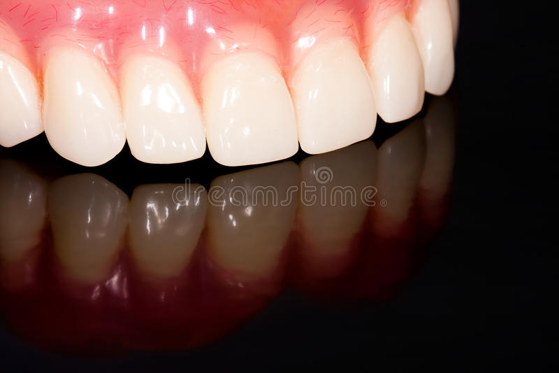 Dental prosthesis. From the laboratory and its reflection image stock photos