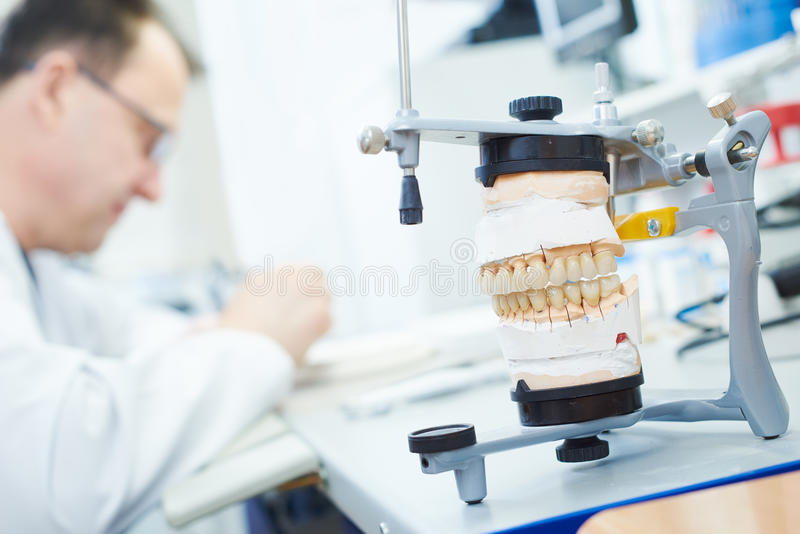 Dental prosthesis work. Dental technician painting tooth during work on dentures at prosthesis laboratory royalty free stock image