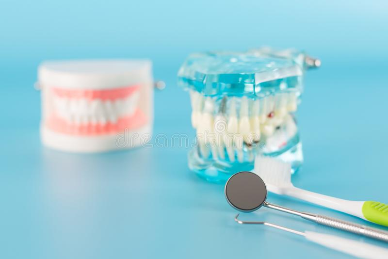 Dental tool with model in dental care concept. Dental tool with model in dental care concept on blue background royalty free stock images