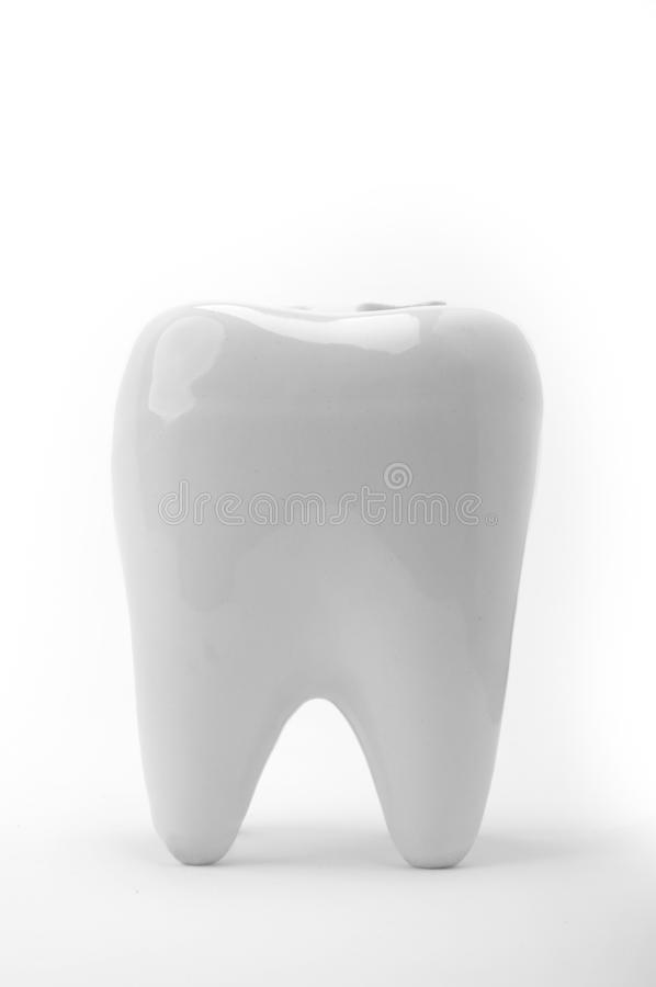 Dente fotografia stock