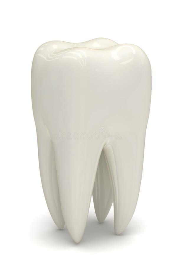 Dente bianco illustrazione vettoriale