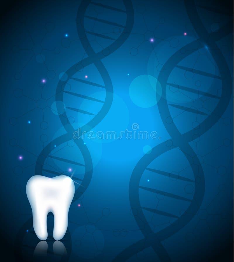 Dente bianco sano e fondo del DNA illustrazione di stock