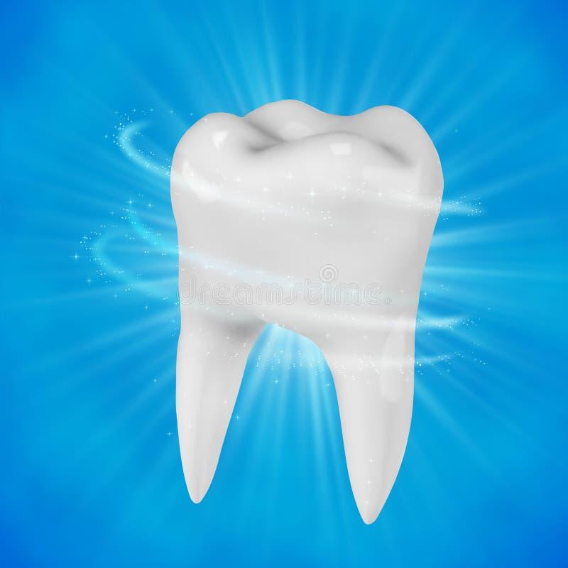 Dente bianco umano Protesi dentarie in stomatologia royalty illustrazione gratis