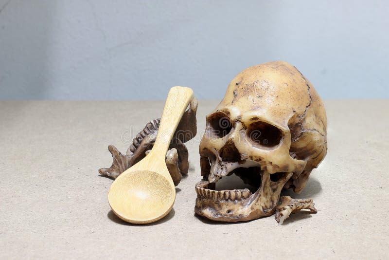 Dente con la carie, denti tagliati, cranio umano con il cucchiaio di legno su fondo di legno - natura morta immagini stock