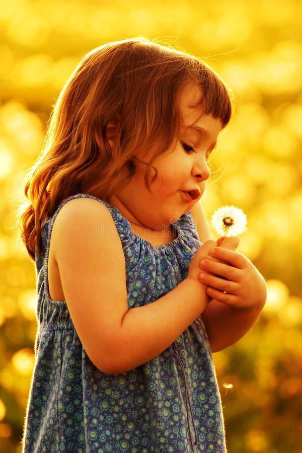 Dente-de-leão de sopro da criança no por do sol foto de stock royalty free