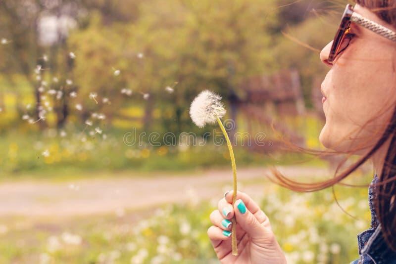 Dente-de-le?o de sopro da menina bonita no parque do ver?o Natureza bonita da grama verde fotografia de stock