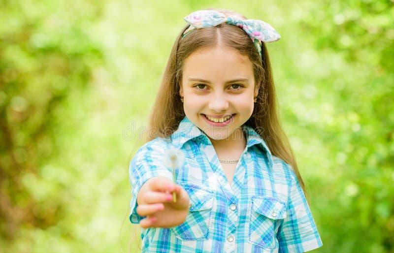 Dente di leone Festa della primavera il giorno delle donne bambina e con il fiore del taraxacum blowball felice della tenuta del  fotografia stock libera da diritti