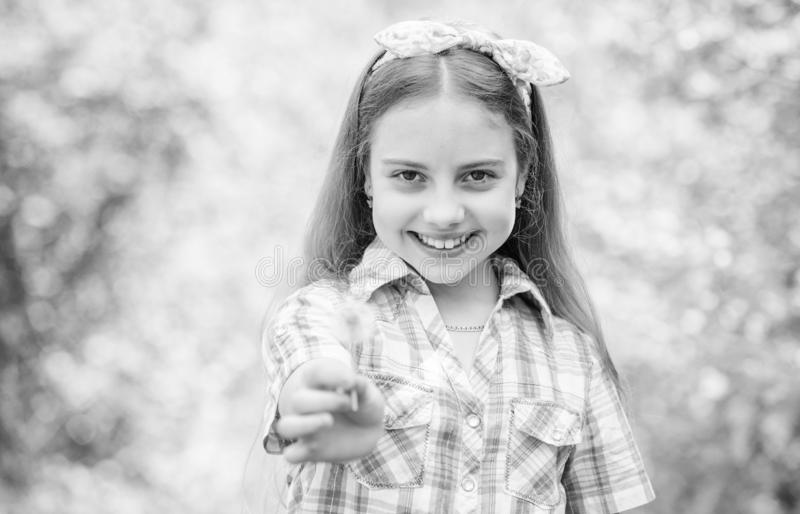 Dente di leone Festa della primavera il giorno delle donne bambina e con il fiore del taraxacum blowball felice della tenuta del  fotografia stock