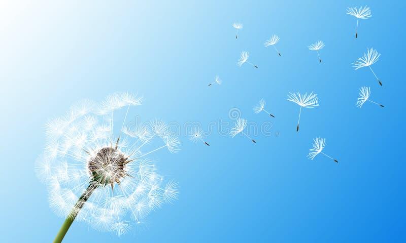 Dente di leone sulla priorità bassa del cielo blu illustrazione vettoriale