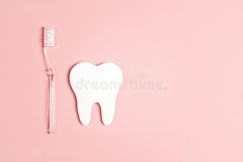 Dente di Libro Bianco con lo spazzolino da denti su fondo rosa Concetto dentario di salute Disposizione piana, vista superiore, s fotografie stock libere da diritti