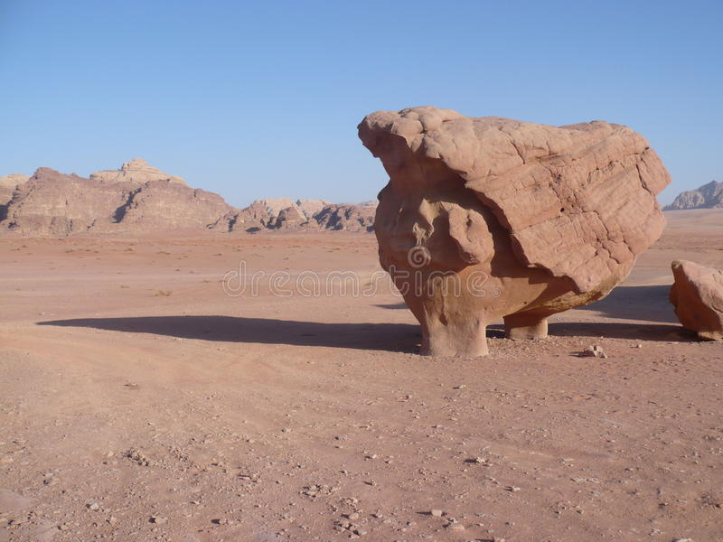 Dente no deserto fotografia de stock royalty free