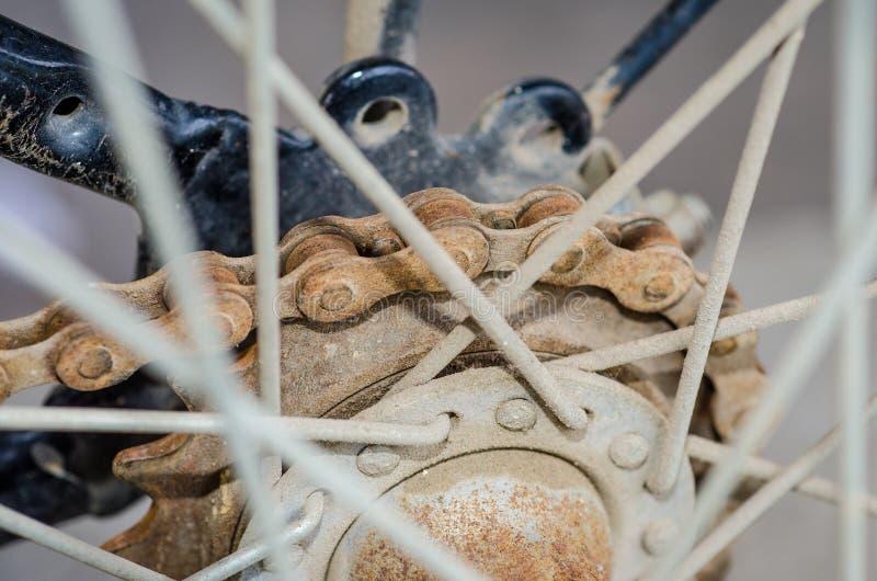 Dente per catena e catena immagini stock