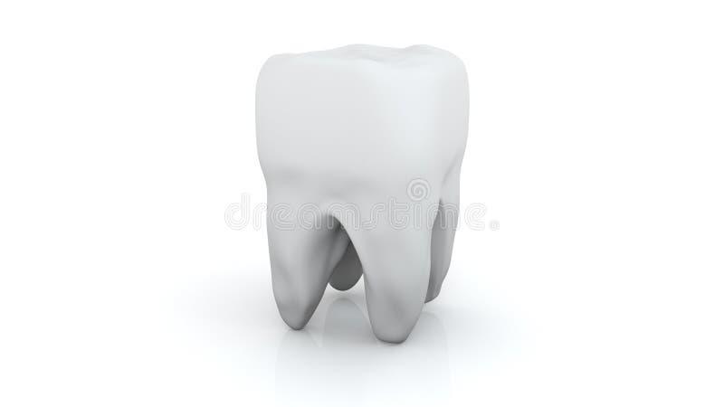 Dente, salute, concetto di odontoiatria Icona del dente isolata 3d rendono illustrazione vettoriale