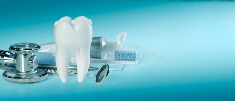 Dente saud?vel grande branco e ferramentas diferentes para cuidados dent?rios e estetosc?pio, no fundo dental do inclina??o Taman imagem de stock