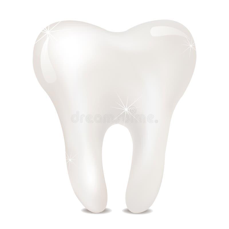 Dente su un fondo bianco illustrazione di stock