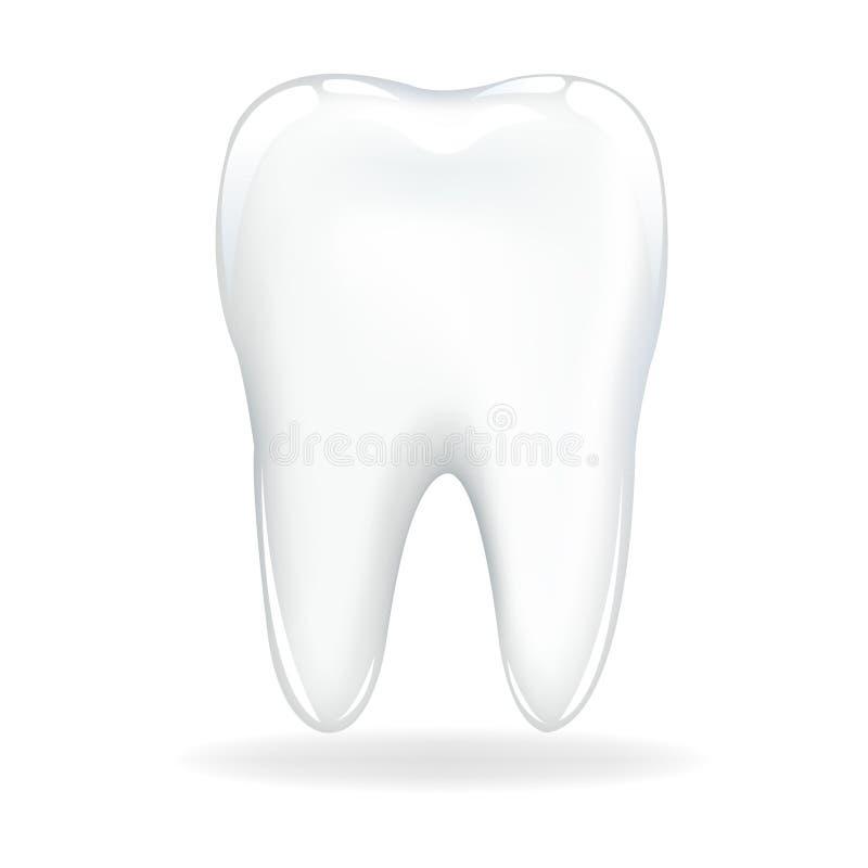 Dente. Vettore illustrazione di stock