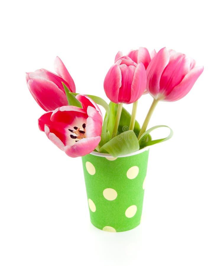 Dentelez les tulipes dans un vase pointillé vert photo stock