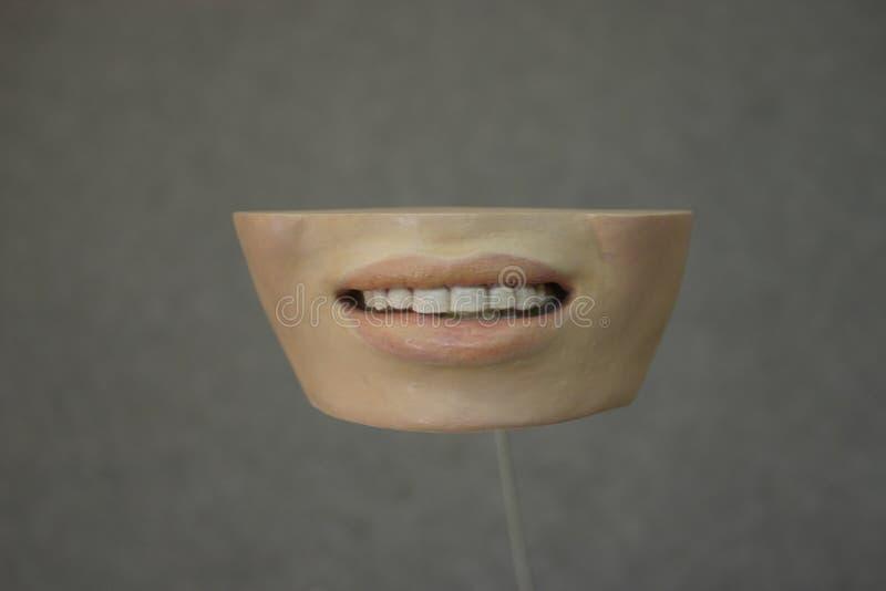 Dentes da arte fotografia de stock