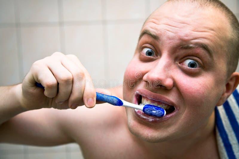 Dentes da limpeza foto de stock
