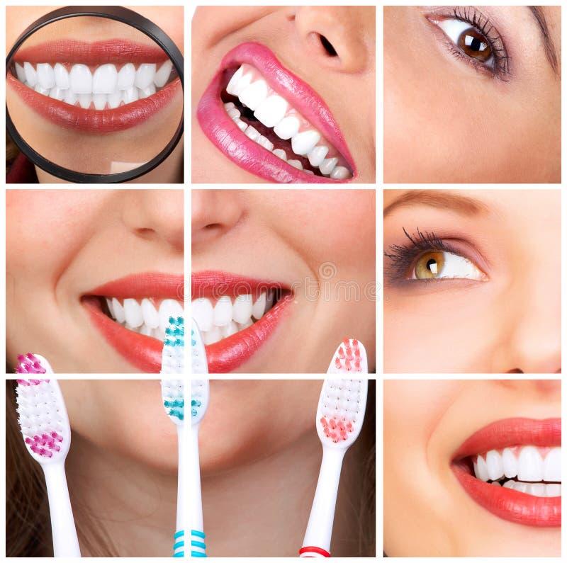 Dentes da mulher imagem de stock