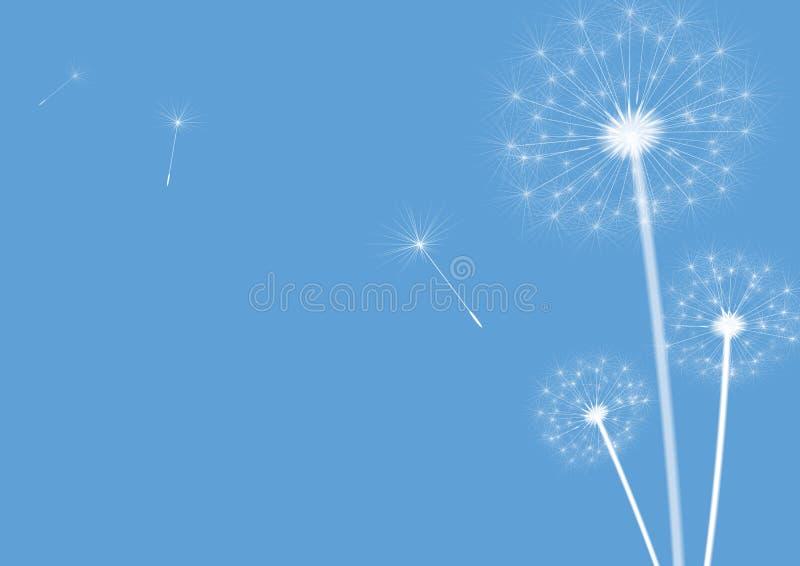 Dentes-de-leão azuis ilustração stock