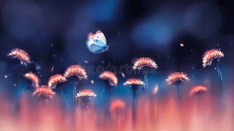 Dentes-de-leão brilhantes corais e borboleta azul Fundo criativo do verão da mola Imagem artística no luminoso imagens de stock royalty free