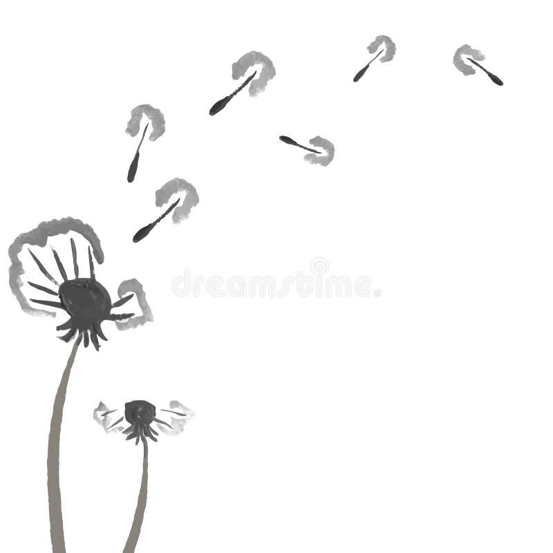 Dentes-de-leão da aquarela Fundo abstrato da flor ilustração do vetor