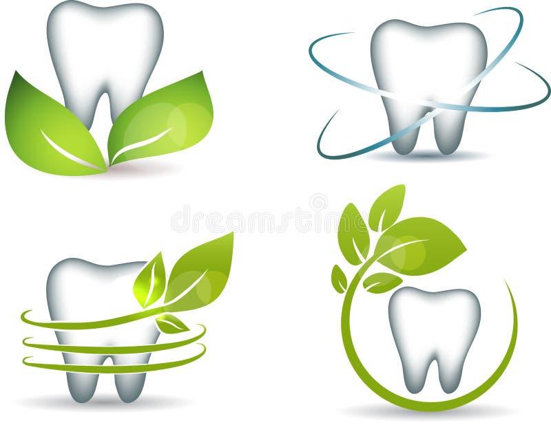 Dentes e folhas ilustração royalty free