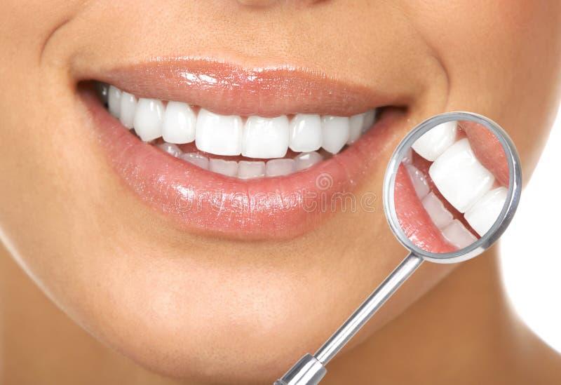 Dentes saudáveis foto de stock
