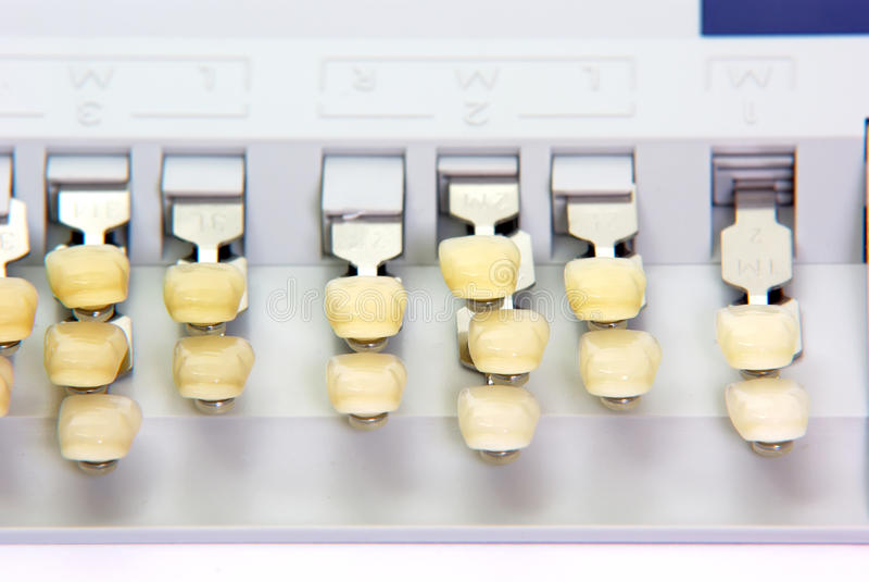 Denti della porcellana - guida di colore fotografia stock libera da diritti