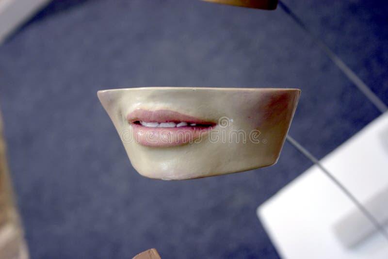 Denti di arte fotografia stock libera da diritti