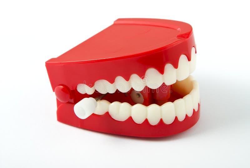 Denti di schiamazzo che affrontano a destra fotografie stock