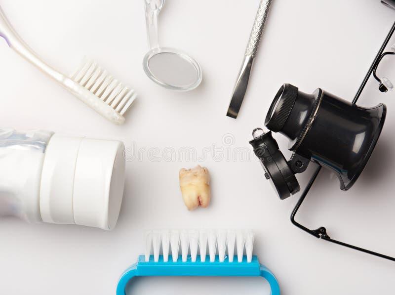 Denti estratti intorno agli strumenti dentari immagine stock