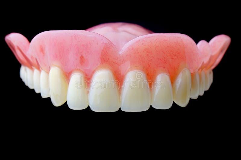 Dentier photographie stock libre de droits