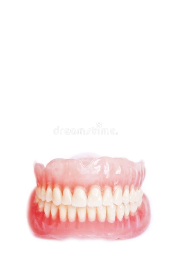 Dentier d'isolement sur le fond blanc photo libre de droits