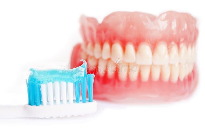 Dentier et pâte dentifrice d'isolement sur le blanc images stock